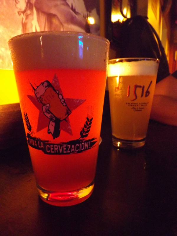 piwo wiedeń (12)