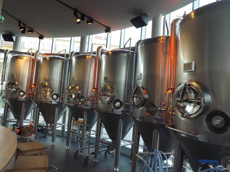 piwo wiedeń (18)