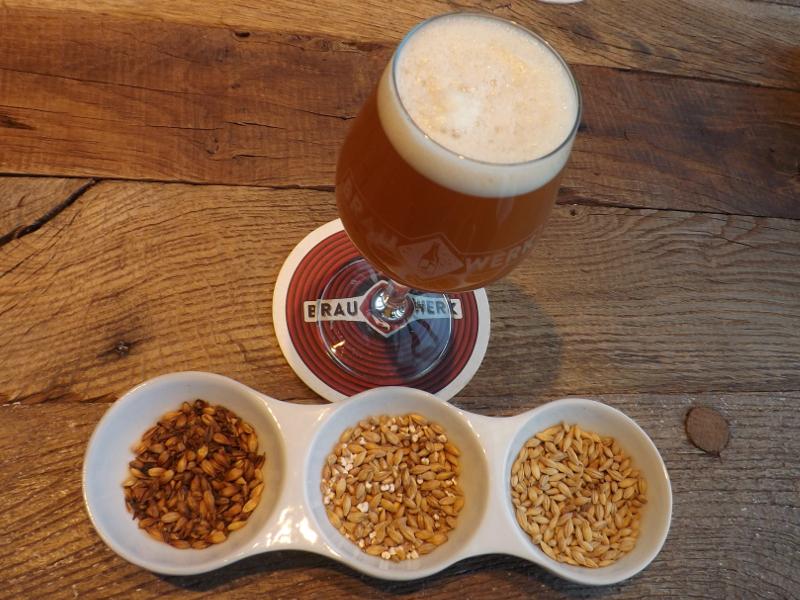 piwo wiedeń (22)