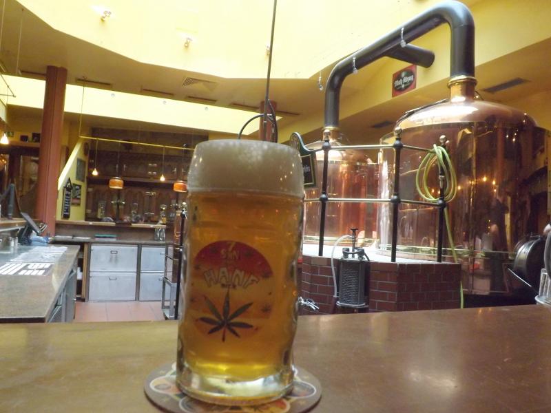 piwo wiedeń (5)