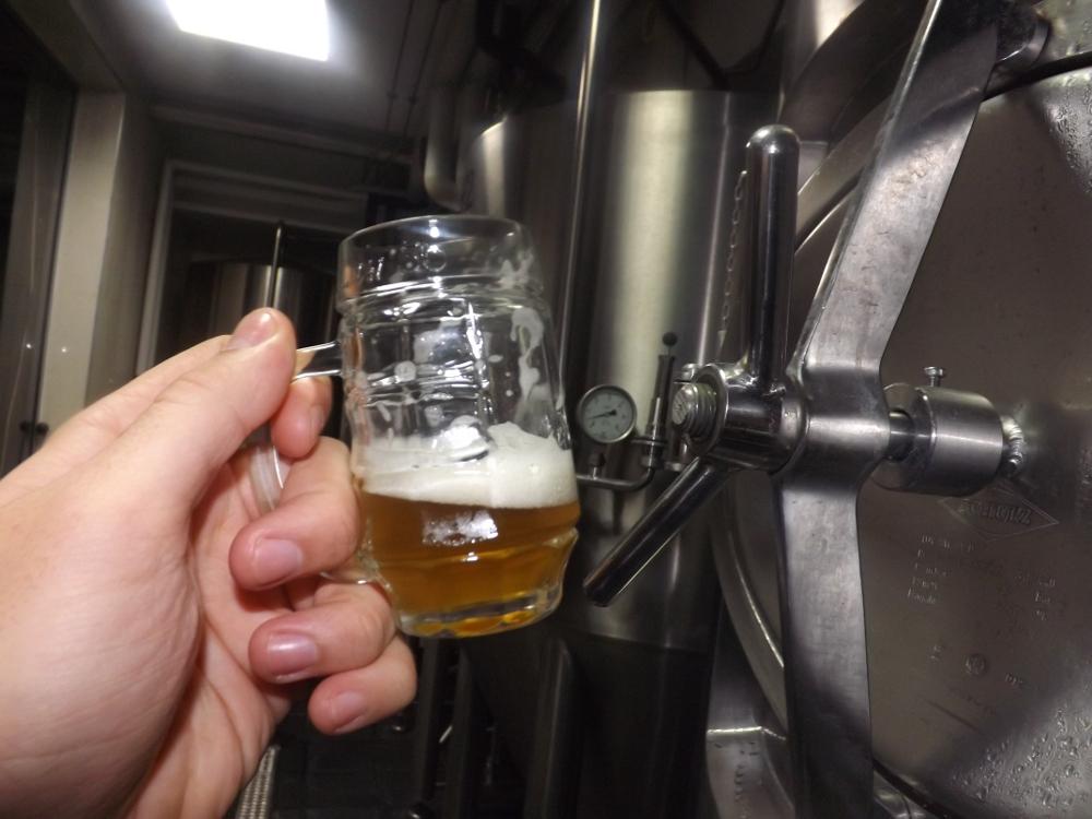 Pivovaria Radom (5)