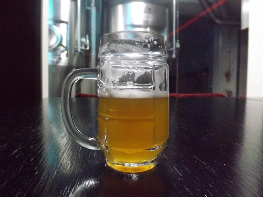 Pivovaria Radom (8)