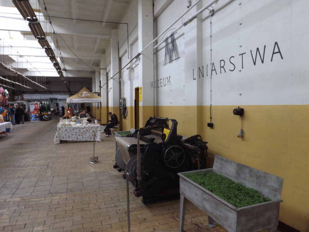 2 Chmiel Fest Zyrardow 2016 (10)