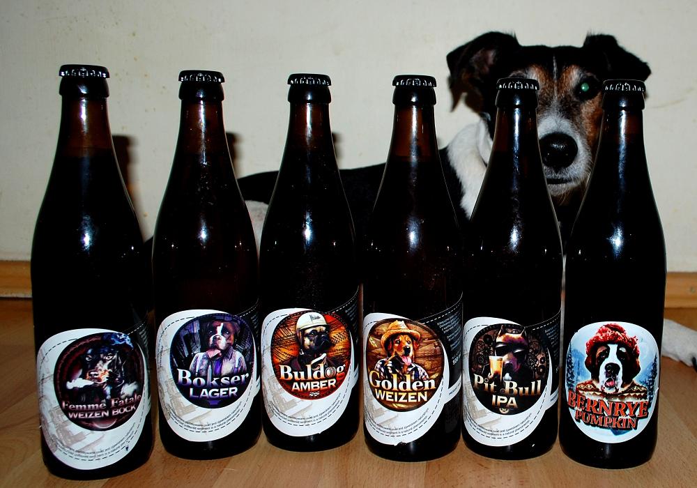 Browar Zloty Pies (1).JPG